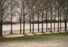 Paul van Riel (1948)  -  Winter stroll, hol - Postkaart -  C9567-1