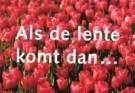 Paul Baars (1949)  -  Als de lente - Postkaart -  C9670-1