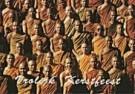 Ger Christiaens  -  Ger Christiaens/vrolijk kerstf - Postkaart -  D0382-1