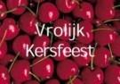 Paul Baars (1949)  -  Groente en fruit 31 / Vrolijk Kersfeest - Postkaart -  D0866-1