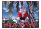 Thomas Haltner  -  Christmas on Bahamas - Postkaart -  D0927-1