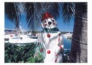 Thomas Haltner  -  Christmas on Bahamas - Postkaart -  D0928-1