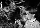 Spaarnestad Fotoarchief,  -  Kindern steken kaarsjes in de kerstboom, 1964 - Postkaart -  D1168-1