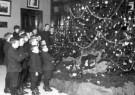 Spaarnestad Fotoarchief,  -  Weeskinderen, bij een grote kerstboom in weeshuis - Postkaart -  D1170-1