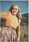 Bill Burnside (1926-1986)  -  M.Monroe, Malibu nr. 4 - Postkaart -  F1191-1