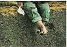 Jan Saudek (1935)  -  Saudek/ The Childhood - Postkaart -  F1720-1