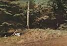 Jan Saudek (1935)  -  Jan Saudek/Forest love & death - Postkaart -  F1940-1