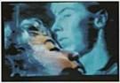Nat Finkelstein (1933-2009)  -  N.Finkelstein/Blue Boy,Yellow - Postkaart -  F1959-1