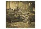 George H. Breitner (1857-1923) -  Meisje in kimono - Postkaart -  F3164-1