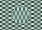 Paul Baars (1949)  -  Movement in static image.'Floating disk' illusion - Postkaart -  PB0150-1