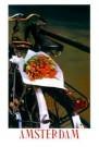 Tjalf Sparnaay (1954)  -  Tulpen op Fiets/ 40*60/ K - Poster -  PS223-1