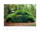 Stanislav Tuma (1950-2005)  -  Green Beetle - Postkaart -  PS333-1