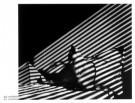 Gijs Woldhek  -  Tokkel sfinx - Postkaart -  PS425-1