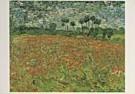 Vincent van Gogh (1853-1890)  -  van Gogh/ Papaverveld/ HGM - Postkaart -  QA088-1