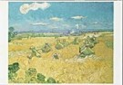 Vincent van Gogh (1853-1890)  -  van Gogh/ Wheat field - Postkaart -  QA090-1