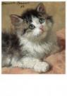 H. Ronner-Knip (1821-1909)  -  An Inquisitive Kitten, 1893 - Wenskaarten-set -  QA379-1