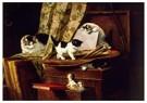 H. Ronner-Knip (1821-1909)  -  Artful play - Wenskaarten-set -  QA383-1