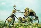 Rennes van de Riet (1961)  -  Flowerbike - Postkaart -  QC299-1