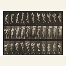 Nude Woman Walking, Plate 133 From Animal Locomotion