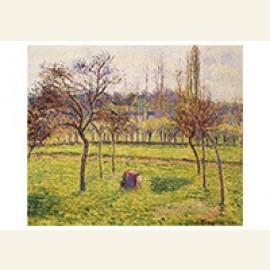Apple Trees In A Field, 1892