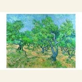 Olijfgaard / Olive-grove, 1889