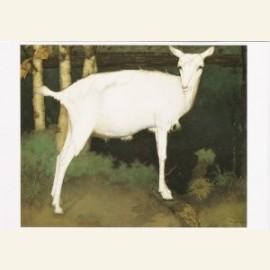 Jonge witte geit, 1914