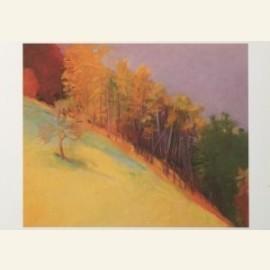 Kahn, W./Autumn Declivty.