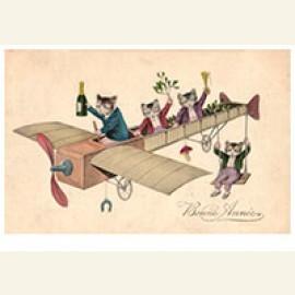 Katjes met champagne in een vliegtuig