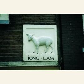Iong Lam, Young lamb