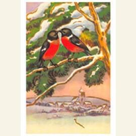 Twee vogels op een tak in een sneeuwlandschap