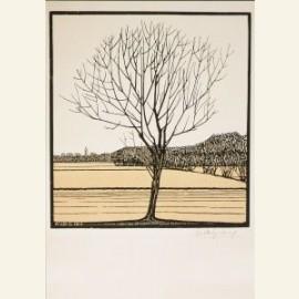 Kale boom in landschap, 1919