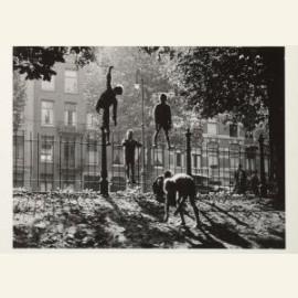 Kastanjes rapen, Sarphatipark, Amsterdam
