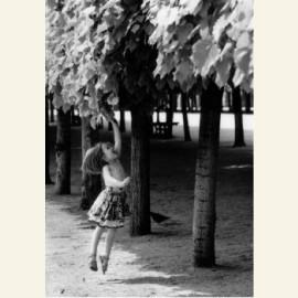 ICDA, Jump for Joy, 2003