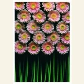 Flowerpower no. 9