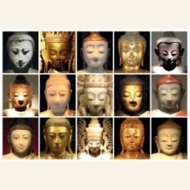 15 Buddha's Thailand