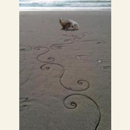 'Larska returns to the sea'