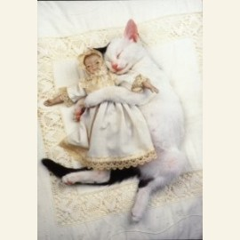 The cat's doll no. 2