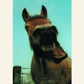 P.Huls/Het grinnekende paard.