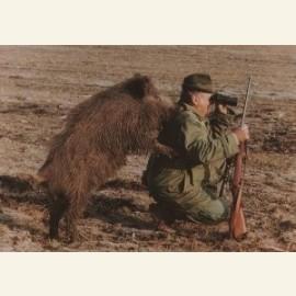 Wild-Boar hunting
