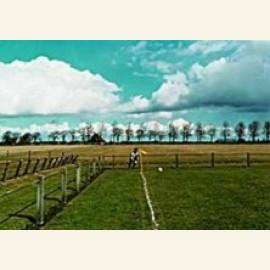 Hollandse velden