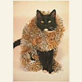 Hammega/ Kerst-kat.