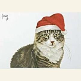Max als kerstman