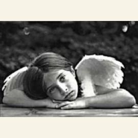 A.Stonehill/Angel
