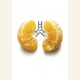 Lungs of mandarine